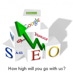 SEO video training