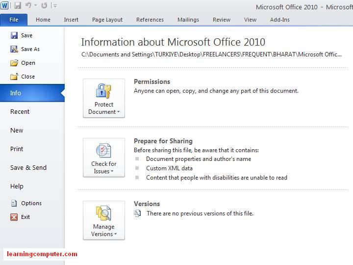 word 2010 microsoft file button ribbon4