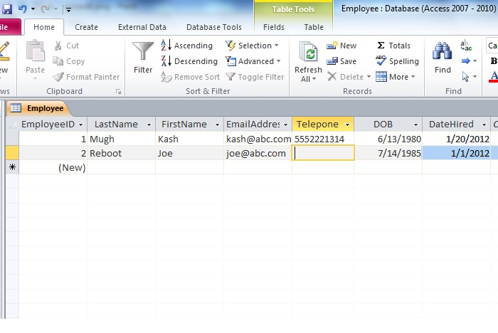 add-data-to-ms-access-2010