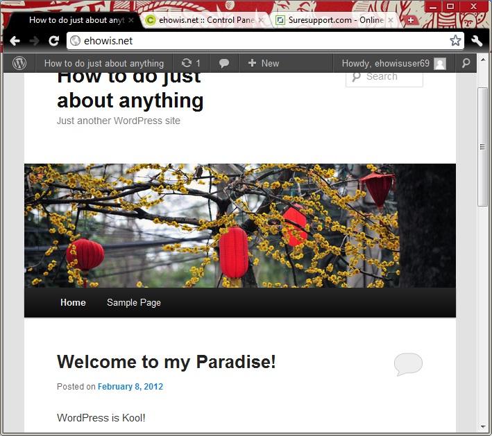 setup-wordpress-as-your-site